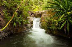 Kalalau Stream By Buck Forester Kauai, HI