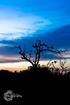 Dusking Sky by Chaminda Silva on 500px