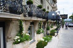 Casa de leilões Sotheby's- Genebra - Viagem com Sabor