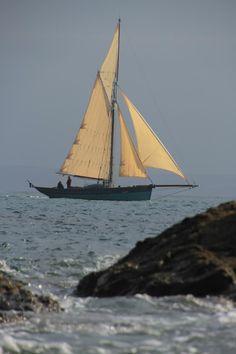 Classic Sailing, Classic Yachts, Sailboat Art, Sailboats, Stormy Waters, Yacht Week, Sailing Ships, Sailing Yachts, Cool Boats