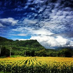 My home town Kanchanaburi