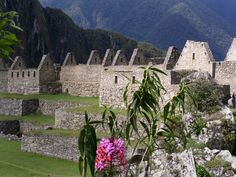 Beautiful Machu Picchu. Have to see this before I die. #PrincessCruises #Travel