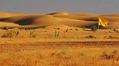 Jaisalmer-DesertLandscape