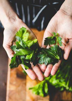 7 Reasons Celery Leaves Deserve Far More Attention — The Vegetable Butcher