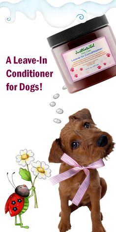 This ultra-rich natural leave in conditioner for dogs will bring back high sheen, silky feel, and softness to even the most damaged coat. Rice protein helps to hydrate and repair coarse dry damaged hair while Meadowfoam Seed oil will re-moisturize dry itchy skin to help calm irrigation.