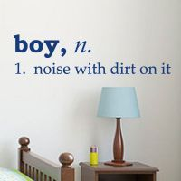 Boy Definition - A noise with dirt on it www.isignsdecalstudio.com