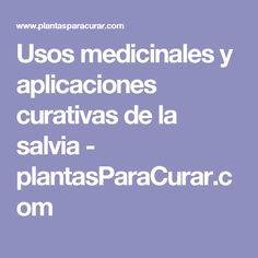 Usos medicinales y aplicaciones curativas de la salvia - plantasParaCurar.com