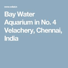Bay Water Aquarium in No. 4 Velachery, Chennai, India