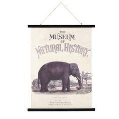 Kakemono imprimé éléphant 71x115 | Maisons du Monde