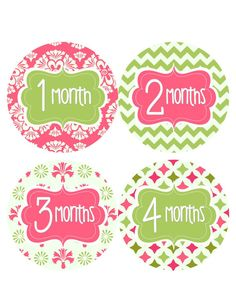 Monthly Baby Stickers Baby Monthly Stickers Hot Pink Green Floral Bodysuit Baby Month Stickers Baby Shower Gift Milestone Photo Prop Cora-R on Etsy, $11.00