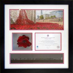 Tower Of London Ceramic Poppy Framed in Deep Box Frame