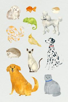 Friendly animals painting collection template | premium image by rawpixel.com / nunny Animal Paintings, Animal Drawings, Cute Cartoon, Cartoon Art, Hamster Cartoon, Color Palette Challenge, Cute Snake, Photo Banner, Jungle Animals