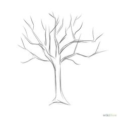 45 best how to draw a family tree images on pinterest family trees
