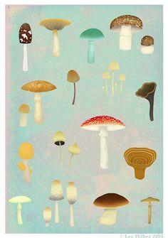 Leo Hiller: mushroom painting