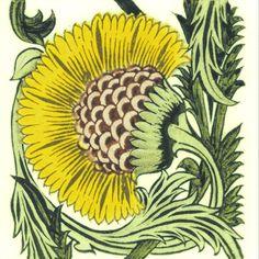 William DeMorgan: Yellow Floral - BBB