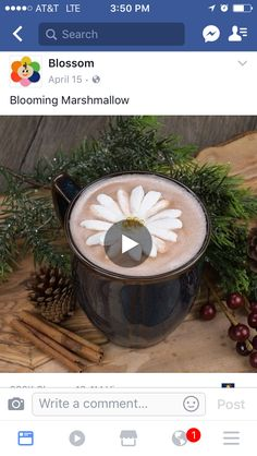 How to make a bloomi