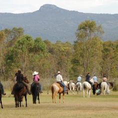 Wongaburra is a 618 acre private property backing directly onto the Grampians National Park in the Western Districts of Victoria.  It is primarily used as a horsemanship education centre. Two thirds of the property are under conservation covenant and it is also used as a wildlife release point.  Facilities include a converted woolshed with fully equipped kitchen/dining/classroom 4 showers and 2 toilets. 'Horse Experience' available by appointment