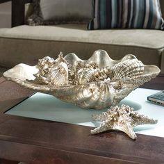 Everything Coastal....: A Sea Shell Display for the Holidays - Coastal Holiday Ideas