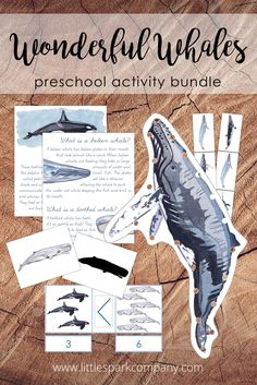 Your little spark will enjoy learning about 7 types of whales with this fun digital download bundle, including over 100 pages of beautifully illustrated resources. This bundle was created to complement your study of whales with your 3-6 year old child and contains 12 interactive learning activities. Montessori Homeschool, Preschool Literacy, Montessori Toddler, Language Activities, Learning Activities, Types Of Whales, Whale Facts, Lacing Cards, Whale Pattern