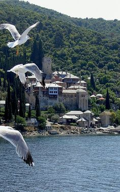 Monasteries at Mount Athos - Greece Halkidiki Greece, The Holy Mountain, Beau Site, Le Palais, Place Of Worship, Greece Travel, Greek Islands, Macedonia, Albania