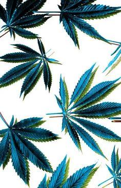 www.elgrinder.com Me podéis encontrar también en: Blog (http://blogelgrinder.blogspot.com.es/) Twitter.( https://twitter.com/ElGrinder_) Facebook (https://www.facebook.com/pages/El-Grinder/447975685290277) Pinterest (http://pinterest.com/elgrinder/boards/) Youtube (https://www.youtube.com/user/elgrinderfacebook) Email (elgrinderfacebook@gmail.com) Google +  (https://plus.google.com/u/0/b/111198422047066799096/111198422047066799096/posts/p/pub)