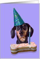 Happy Birthday Card - featuring a Dachshund Card by Greeting Card Universe. $3.00. 5 x 7 inch premium quality folded paper greeting card. Greeting Card Universe offers the largest selection of Animals / Pets cards on the web. Make the occasion a memorable one by sending a custom Animals / Pets card. Look no further than Greeting Card Universe for your Animals / Pets card needs. This paper card includes the following themes: dachshund, birthday, and hat. Set your...
