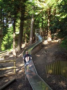 Whinlatter Forest and Castlerigg Stone Circle Lake District, Natural Playground, Cumbria, Outdoor Activities, Glamping, Woodland, Places To Visit, Nature, Outdoor Adventures