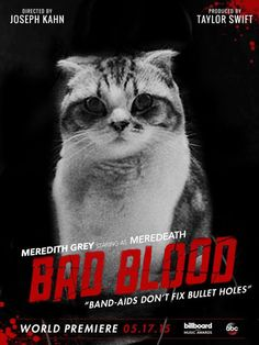 bad blood music videos newest addition... Please visit our website @ https://22taylorswift.com