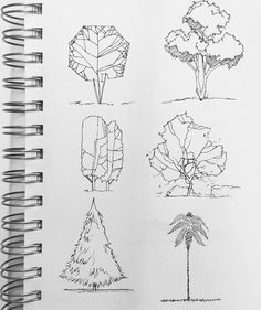 Backyard Patio with Landscape Lighting tree sketches Gothic Architecture Drawing, Architecture Drawing Sketchbooks, Conceptual Architecture, Architecture Sketches, House Architecture, Chinese Architecture, Futuristic Architecture, Bauhaus Architecture, Renaissance Architecture