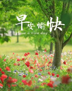 Good Morning Friends Quotes, Special Words, Good Morning Greetings, Good Day, Picture Photo, Blessed, Pictures, Chinese Quotes, Festivals