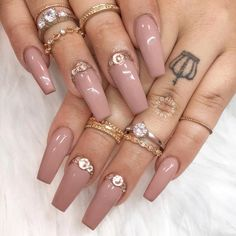 """1,027 Likes, 2 Comments - Shining Claws 
