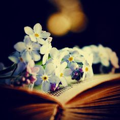 not many places better that a good book <3