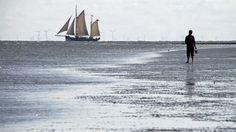 World Heritage – the Wadden Sea