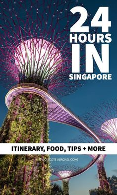 Archecture, food and light shows! This jam-packed Singapore itinerary details what to do in one day in Singapore, the world's most expensive city. Singapore Vacation, Singapore Itinerary, Singapore Travel, Fiji Travel, Travel Tips, Travel Destinations, Lanai Island, Island Beach, Malaysia Travel