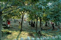Circuit in the Sacred Woods in Damanhur. A natural labyrinth that serves for meditation in walking, wakeful intention setting , the symbolic journey of the Self, ceremony & ritual ~