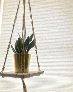 "hangs. on Instagram: ""Completely in l o v e with this . . . . . . . 📸: @pariajamshidi - #macrame #plants #plantsofinstagram #halifax #novascotia #eastcoast…"" Nova Scotia, Plant Hanger, Macrame, Planter Pots, Instagram, Home Decor, Decoration Home, Room Decor, Home Interior Design"