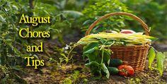 August Chore Tips #landscaping #gardening #blog