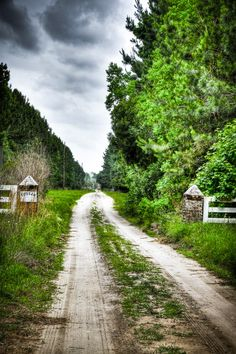Country road (South Carolina) by Jeremy Duguid