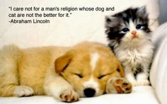 quotes with animals - Google Search