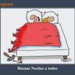 Chistosas Imágenes Del Whatsapp De Buenas Noches