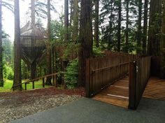 The Redwoods Treehouse  @antaitken  #treehouseclub