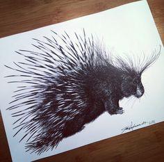 Porcupine Illustration. #art #drawing