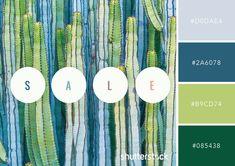 101 Color Combinations to Inspire Your Next Design – Desert Beauty Color Palette Colour Pallette, Colour Schemes, Color Combinations, Couleur Hexadecimal, Green Contrast Color, Desert Colors, Luminous Colours, Color Profile, Living Room Colors