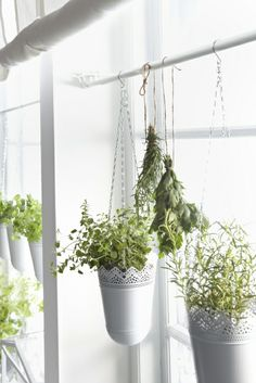 22 ideas kitchen window herb garden tie rods - All For Garden Ikea Planters, Window Planters, Hanging Planters, Galvanized Planters, Window Shelf For Plants, Window Unit, Hanging Plants Outdoor, Indoor Plant Wall, Diy Hanging