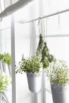 Hang je plantjes op in de KURAR plantenpotten.
