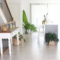T•R•O•P•I•C•A•L  All you have to do is cut a few big green leaves, pop them in a vase and voila, tropical vibes! 😁🌴 Tropical Vibes, Green Leaves, Entryway Tables, Vase, Pop, Projects, Furniture, Home Decor, Log Projects