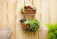 If you're an apartment dweller with a green thumb and no garden, make a mini one in a shower caddy that can hang in any room in your home. If you're feeling really fancy you can even line the wire baskets with moss. See more at P&G Everyday »   - HouseBeautiful.com