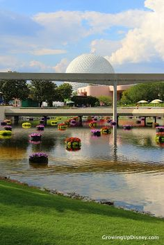Spaceship Earth, Epcot, floating flower garden