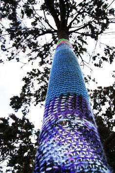 Yarnbombed Tree