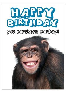 Funny Birthday Wishes, Images, Messages and Quotes